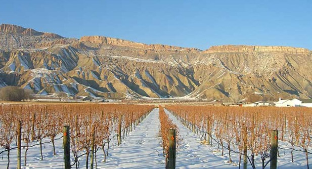 Colorado: Wine, Winters and the West